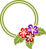 Hibiscus Frame. The Hibiscus  is vector illustration Royalty Free Stock Photos