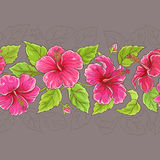 Hibiscus horizontal pattern. Hibiscus flowers horizontal pattern on color background Royalty Free Stock Image