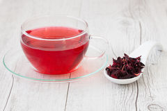 Hibiscus infusion Stock Image