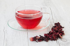 Hibiscus infusion Stock Images