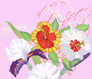 Hibiscus and Iris on a Pink Background Royalty Free Stock Images