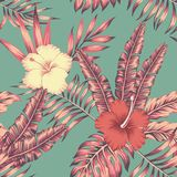 Hibiscus leaves vintage color tropical seamless pattern. Hibiscus flowers and leaves vintage color tropical vector seamless pattern composition. Flat beach party Stock Photos