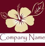 Hibiscus logo Royalty Free Stock Images