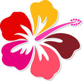 Hibiscus logo. Illustration art of a hibiscus logo with isolated background Stock Photography