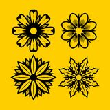 Hibiscus, Madeliefjes, Jasmijn, orchidee, de Stevige Ontwerpen van het Bloemenpak Royalty-vrije Stock Afbeeldingen