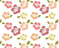 Hibiscus-Muster Lizenzfreie Stockfotografie
