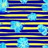 Hibiscus-nahtloses Muster mit Linien Lizenzfreie Stockfotos