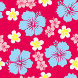 Hibiscus pattern. This graphic is seamless hibiscus pattern Stock Photo