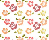 Hibiscus Pattern Royalty Free Stock Photography