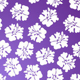 Hibiscus Pattern - Purple. A repeating wallpaper pattern - purple hibiscus Stock Photography