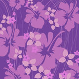 Hibiscus purple stock illustration