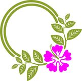 Hibiscus-Rahmen Lizenzfreies Stockbild