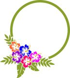 Hibiscus-Rahmen Lizenzfreies Stockfoto