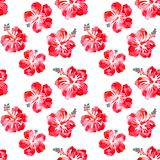 Hibiscus red flowers watercolor seamless pattern. On white background vector illustration