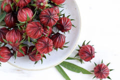 Hibiscus or roselle fruits in plate on white wooden table. Stock Image