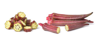 Hibiscus sabdariffa or roselle fruits isolated on white backgrou Royalty Free Stock Photos