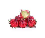 Hibiscus sabdariffa or roselle fruits Stock Photography