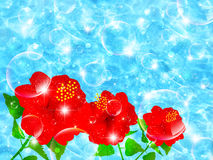 Hibiscus sea landscape Royalty Free Stock Images