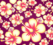 Hibiscus seamless pattern Stock Images