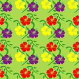 Hibiscus seamless pattern Royalty Free Stock Image