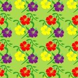 Hibiscus seamless pattern Royalty Free Stock Image