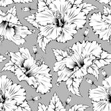Hibiscus seamless pattern Stock Image