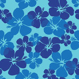 Hibiscus seamless pattern Stock Photos