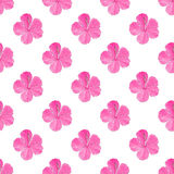 Hibiscus. Seamless pattern with flowers. Hand-drawn background. Vector illustration. Royalty Free Stock Photo
