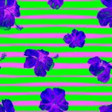 Hibiscus Seamless Pattern with Lines. Swimwear Design.  Hand Painted Illustration of Tropical Leaves and Flowers Summer Hawaiian Pattern.  Aloha Fabric Royalty Free Stock Images