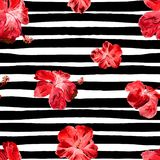 Hibiscus Seamless Pattern with Lines. Swimwear Design.  Hand Painted Illustration of Tropical Leaves and Flowers Summer Hawaiian Hibiscus Flower Pattern Royalty Free Stock Photo