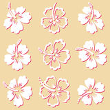 Hibiscus silhouette icons Royalty Free Stock Images