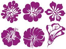 Hibiscus silhouettes vector set Royalty Free Stock Photos