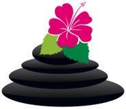 Hibiscus spa Royalty-vrije Stock Foto's