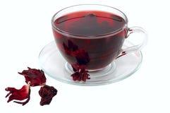 Hibiscus tea Royalty Free Stock Photography