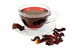Tea hibiscus with petals Royalty Free Stock Images