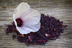 Hibiscus tea (Hibiscus sabdariffa) flower and sepals dried for i Royalty Free Stock Images