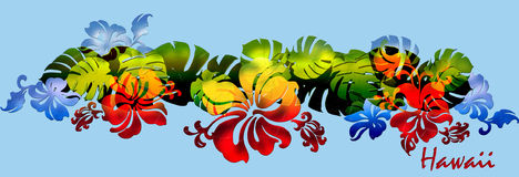Hibiscus tea leaf band_rainbow stock illustration