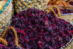 Hibiscus tea. Selective focus Stock Photography