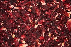 Hibiscus tea on a white background.  Isolated. Food background. Stock Image