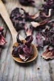 Hibiscus-Tee Stockfoto