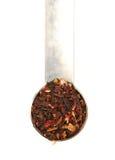 Hibiscus-Tee Stockbild