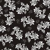 Hibiscus. Tela. Foto de Stock Royalty Free