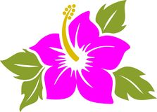 Hibiscus. The tree is vector illustration Stock Photo