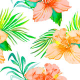 Hibiscus. Tropical plants seamless pattern and palm branches.. Exotic flower. Vector. Watercolor. Foliage. Royalty Free Stock Photography