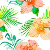 hibiscus Tropische van de installaties naadloze patroon en palm takken Exotische bloem Vector watercolor gebladerte Royalty-vrije Stock Fotografie