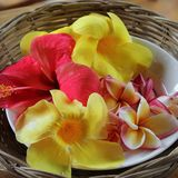 Hibiscus und tropische Blumen Stockfotografie