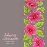 Hibiscus vector background. Hibiscus flowers vector pattern on color background Stock Photography