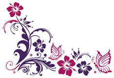 Hibiscusbloesems en vlinders Royalty-vrije Stock Afbeeldingen