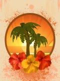 Hibiscusblumen und Palmen Stockbilder