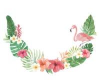 Hibiskus för ärke- för vattenfärg för flamingo tropisk blom- för blommor Plumeria för sidor Royaltyfri Foto